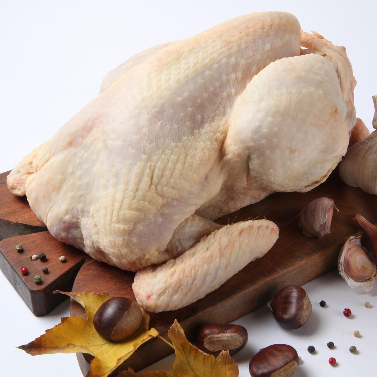 Menghilangkan Bau Amis Daging Bebek