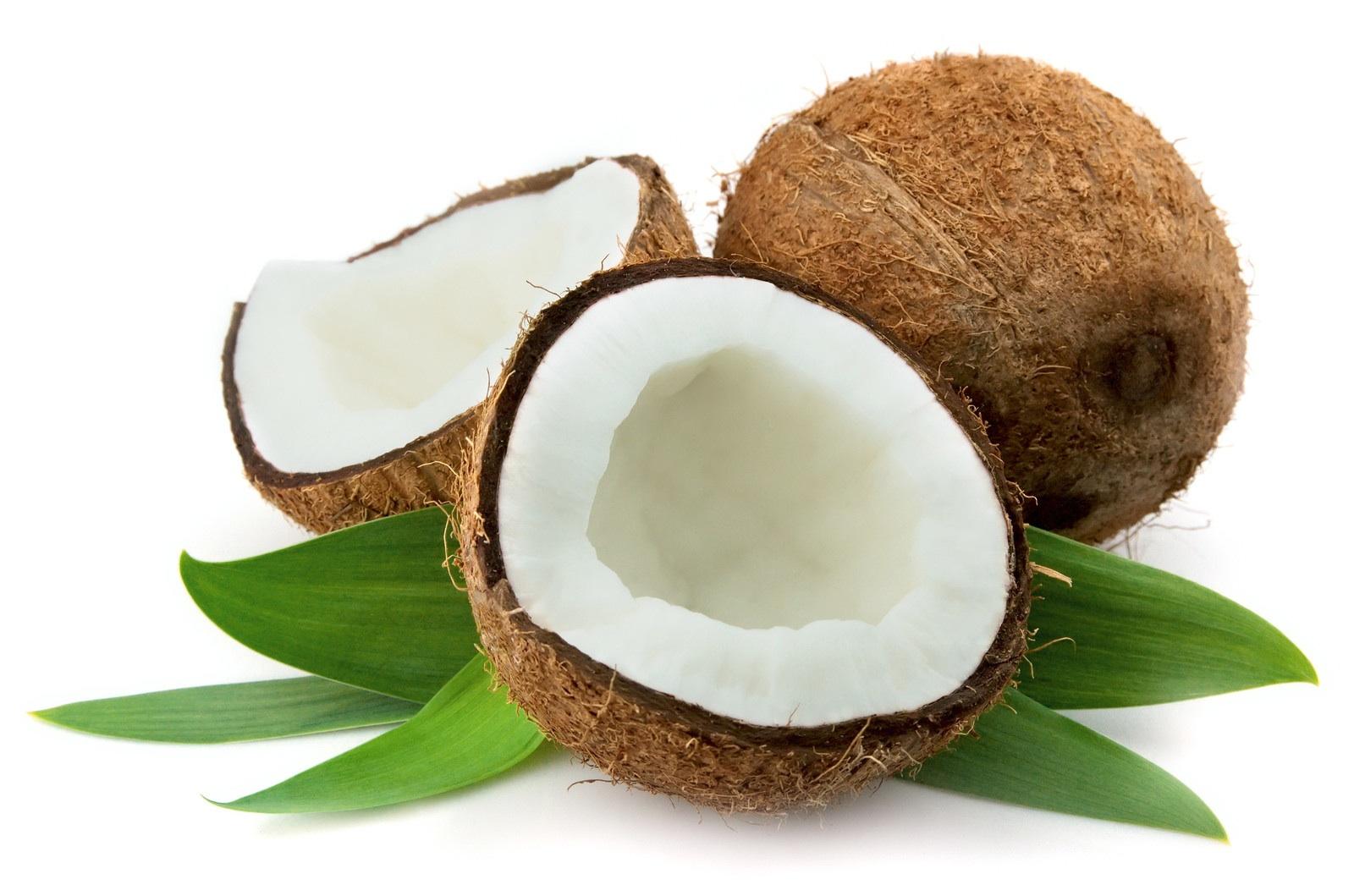 memilih dan menggunakan kelapa